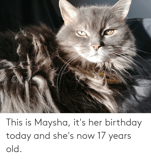 17 years: This is Maysha, it's her birthday today and she's now 17 years old.