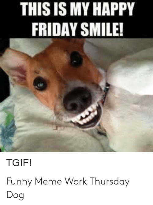 25+ Best Memes About Happy Friday Smile | Happy Friday ...