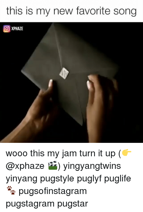 My Jam: this is my new favorite song  XPHAZE wooo this my jam turn it up (👉@xphaze 🎬) yingyangtwins yinyang pugstyle puglyf puglife🐾 pugsofinstagram pugstagram pugstar
