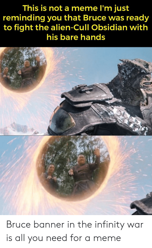 Infinity War: This is not a meme l'm just  reminding you that Bruce was ready  to fight the alien-Cull Obsidian with  his bare hands Bruce banner in the infinity war is all you need for a meme