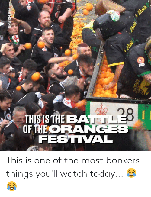 Dank, Today, and Watch: THIS IS TAE BAA  OHEORANGES  FESTIVAL This is one of the most bonkers things you'll watch today... 😂😂