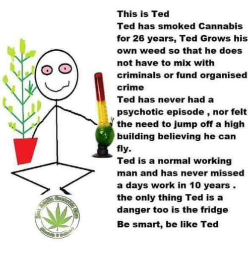 Be Like, Crime, and Memes: This is Ted  Ted has smoked Cannabis  for 26 years, Ted Grows his  own weed so that he does  not have to mix with  criminals or fund organised  crime  Ted has never had a  psychotic episode, nor felt  the need to jump off a high  building believing he can  fly.  Ted is a normal working  man and has never missed  a days work in 10 years.  the only thing Ted is a  danger too is the fridge  Be smart, be like Ted