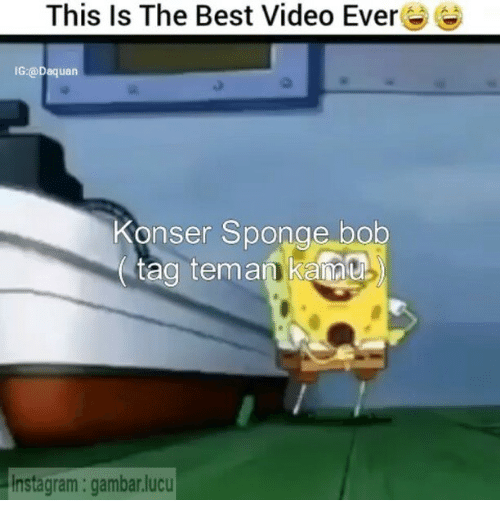 Daquan, Instagram, and Best: This Is The Best Video Ever  IG:@Daquan  Konser Sponge bob  ag teman Kanu  instagram: gambar.lucu