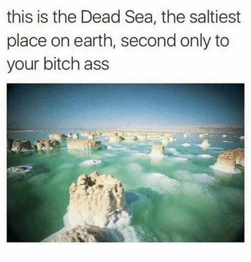 dead sea: this is the Dead Sea, the saltiest  place on earth, second only to  your bitch ass