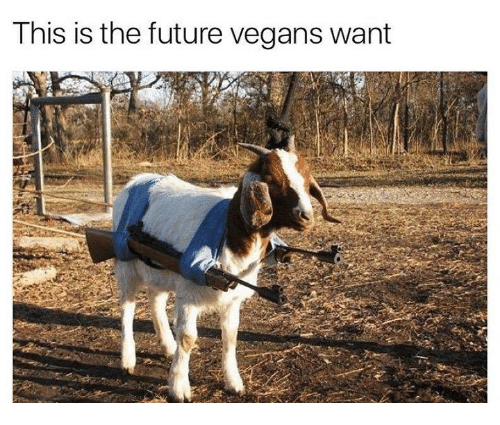 Future, Humans of Tumblr, and This: This is the future vegans want