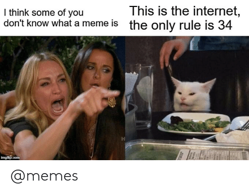 you don't know: This is the internet,  the only rule is 34  I think some of you  don't know what a meme is  imgflip.com @memes