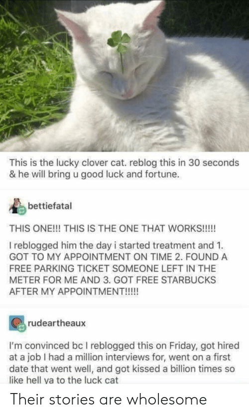 Ticket: This is the lucky clover cat. reblog this in 30 seconds  & he will bring u good luck and fortune  bettiefatal  THIS ONE!!! THIS IS THE ONE THAT WORKS!!!!  I reblogged him the day i started treatment and 1  GOT TO MY APPOINTMENT ON TIME 2. FOUND A  FREE PARKING TICKET SOMEONE LEFT IN THE  METER FOR ME AND 3. GOT FREE STARBUCKS  AFTER MY APPOINTMENT!!!!!  rudeartheaux  I'm convinced bc I reblogged this on Friday, got hired  at a job I had a million interviews for, went on a first  date that went well, and got kissed a billion times so  like hell ya to the luck cat Their stories are wholesome