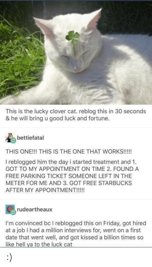 Ticket: This is the lucky clover cat. reblog this in 30 seconds  & he will bring u good luck and fortune.  bettiefatal  THIS ONE!!! THIS IS THE ONE THAT WORKS!!!!  I reblogged him the day i started treatment and 1.  GOT TO MY APPOINTMENT ON TIME 2. FOUND A  FREE PARKING TICKET SOMEONE LEFT IN THE  METER FOR ME AND 3. GOT FREE STARBUCKS  AFTER MY APPOINTMENT!!!!!  rudeartheaux  I'm convinced bc I reblogged this on Friday, got hired  at a job I had a million interviews for, went on a first  date that went well, and got kissed a billion times so  like hell ya to the luck cat :)