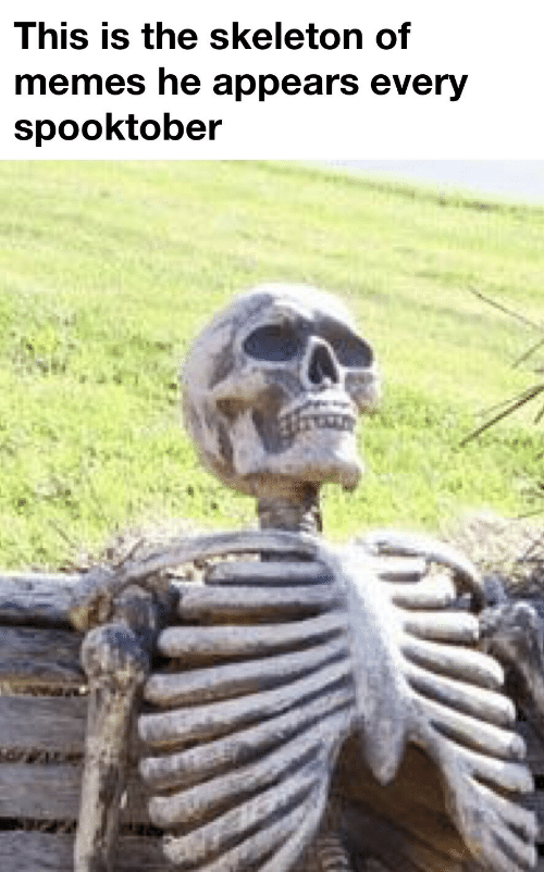 Appears: This is the skeleton of  memes he appears every  spooktober