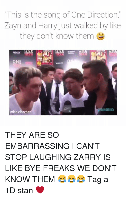 zayne: This is the song of One Direction.  Zayn and Harry just walked by like  they don't know them  SONY  SONY  IO  minnielaceha THEY ARE SO EMBARRASSING I CAN'T STOP LAUGHING ZARRY IS LIKE BYE FREAKS WE DON'T KNOW THEM 😂😂😂 Tag a 1D stan ❤
