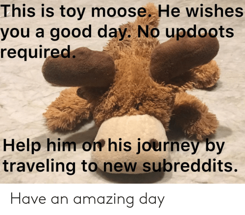 traveling: This is toy moose. He wishes  you a good day. No updoots  required.  Help him on his journey by  traveling to new subreddits. Have an amazing day