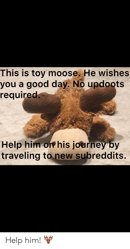 Journey, Good, and Help: This is toy moose. He wishes  you a good day. No updoots  required.  Help him on his journey by  traveling to new subreddits. Help him! 🦌