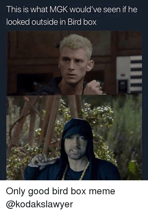 Funny, Meme, and Mgk: This is what MGK would've seen if he  looked outside in Bird box Only good bird box meme @kodakslawyer