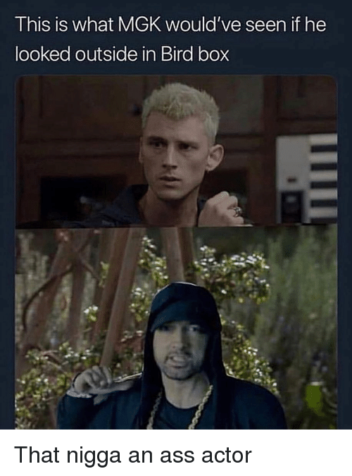 Ass, Mgk, and Dank Memes: This is what MGK would've seen if he  ooked outside in Bird box That nigga an ass actor