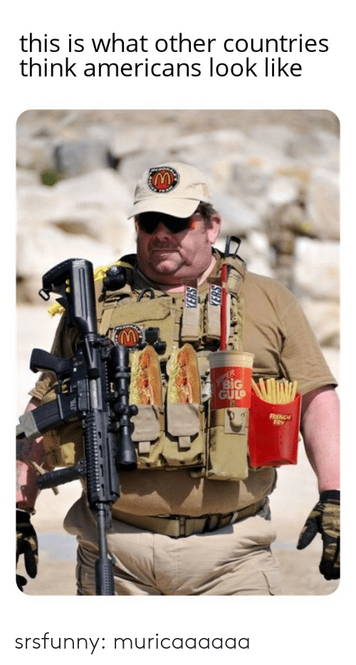 americans: this is what other countries  think americans look like  ER  BiG  GULP  FRENCH  FRY srsfunny:  muricaaaaaa