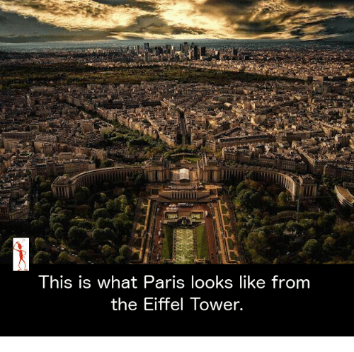 Eiffel Towered: This is what Paris looks like from  the Eiffel Tower.