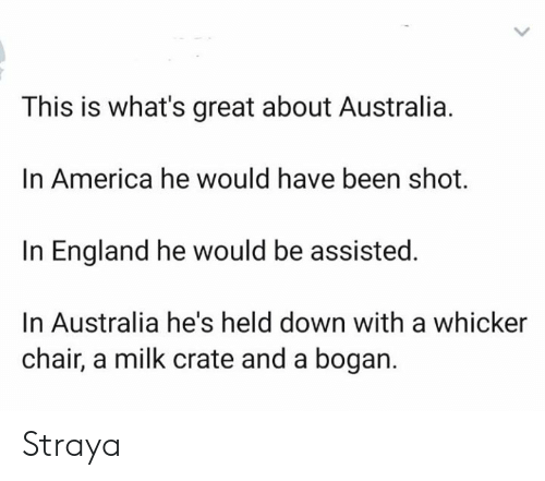 America, England, and Memes: This is what's great about Australia  In America he would have been shot.  In England he would be assisted.  In Australia he's held down with a whicker  chair, a milk crate and a bogan. Straya