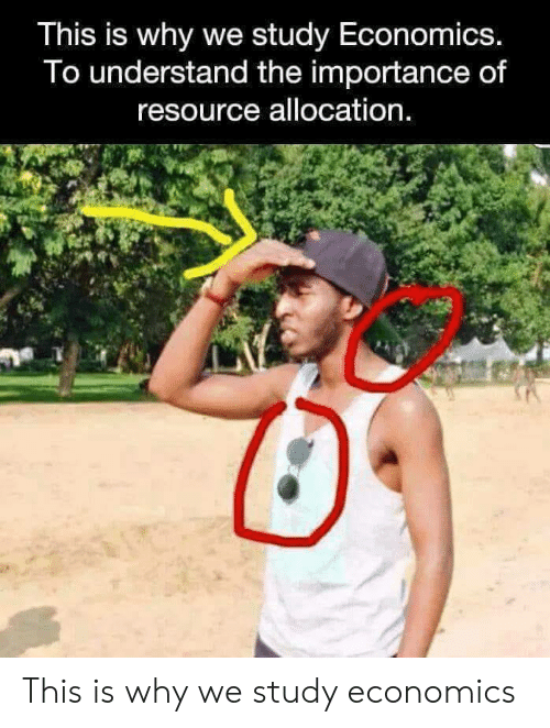 Economics, Why, and Study: This is why we study Economics.  To understand the importance of  resource allocation. This is why we study economics