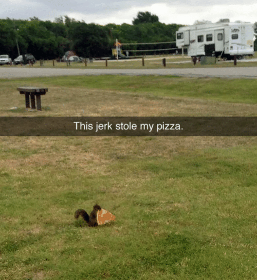 Pizza, Jerk, and Stole: This jerk stole my pizza.