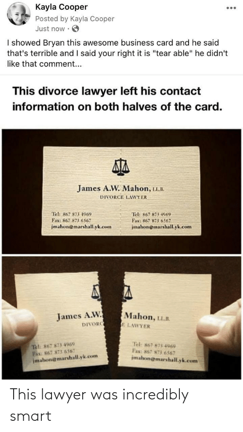 smart: This lawyer was incredibly smart