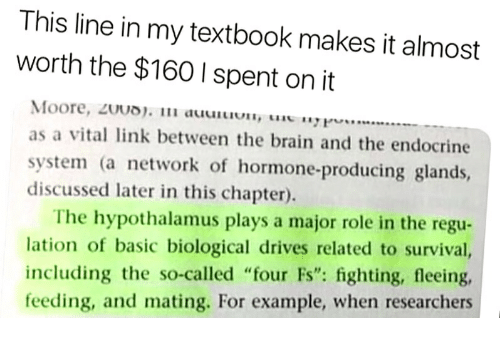 """Brain, Link, and Network: This line in my textbook makes it almost  worth the $160 I spent on it  Moore, 20UD). 1 auun....  as a vital link between the brain and the endocrine  system (a network of hormone-producing glands,  discussed later in this chapter).  The hypothalamus plays a major role in the regu-  lation of basic biological drives related to survival,  including the so-called """"four Fs"""": fighting, fleeing,  feeding, and mating. For example, when researchers"""
