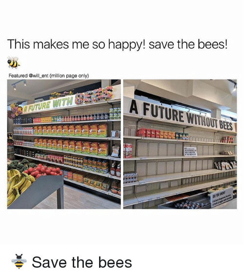 Future, Memes, and Happy: This makes me so happy! save the bees!  Featured will ent (million page only)  A FUTURE WITHOUT BEES 🐝 Save the bees
