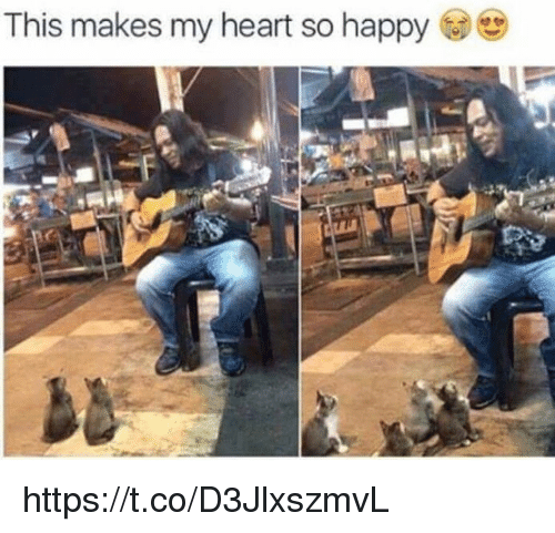 Memes, Happy, and Heart: This makes my heart so happy https://t.co/D3JlxszmvL