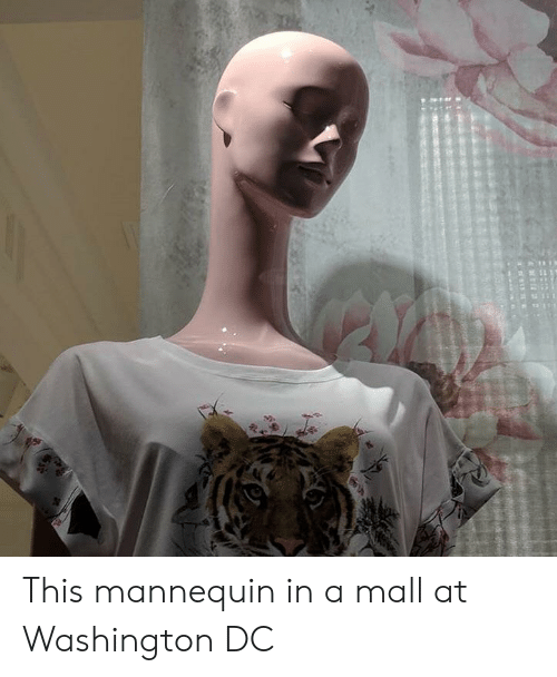 Washington Dc, Mannequin, and Washington: This mannequin in a mall at Washington DC