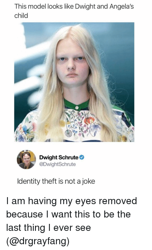 Funny, Dwight Schrute, and Model: This model looks like Dwight and Angela's  child  Dwight Schrute  @DwightSchrute  ldentity theft is not a joke I am having my eyes removed because I want this to be the last thing I ever see (@drgrayfang)