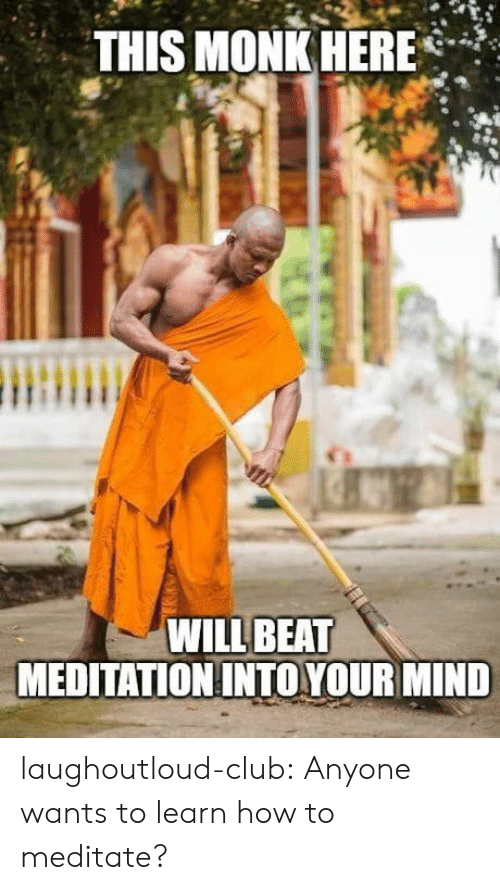 Club, Tumblr, and Blog: THIS MONK HERE*  WILL BEAT  MEDITATION INTO YOUR MIND laughoutloud-club:  Anyone wants to learn how to meditate?
