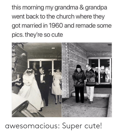 so cute: this morning my grandma & grandpa  went back to the church where they  got married in 1960 and remade some  pics. they're so cute awesomacious:  Super cute!