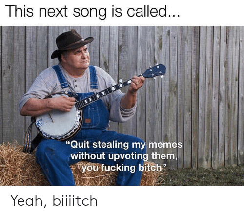 """Bitch, Fucking, and Memes: This next song is called...  """"Quit stealing my memes  without upvoting them,  you fucking bitch"""" Yeah, biiiitch"""
