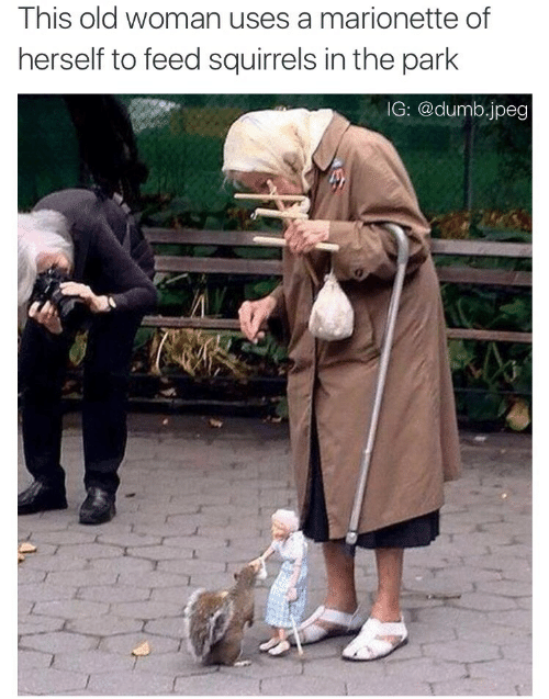 Dumb, Old Woman, and Old: This old woman uses a marionette of  herself to feed squirrels in the park  IG: @dumb.jpeg