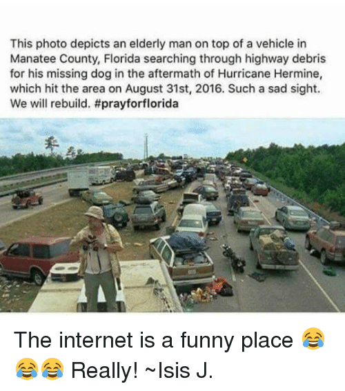 Dogs, Internet, and Isis: This photo depicts an elderly man on top of a vehicle in  Manatee County, Florida searching through highway debris  for his missing dog in the aftermath of Hurricane Hermine,  which hit the area on August 31st, 2016. Such a sad sight.  We will rebuild. The internet is a funny place 😂😂😂 Really! ~Isis J.