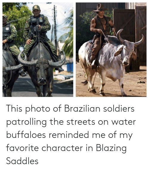 Favorite: This photo of Brazilian soldiers patrolling the streets on water buffaloes reminded me of my favorite character in Blazing Saddles