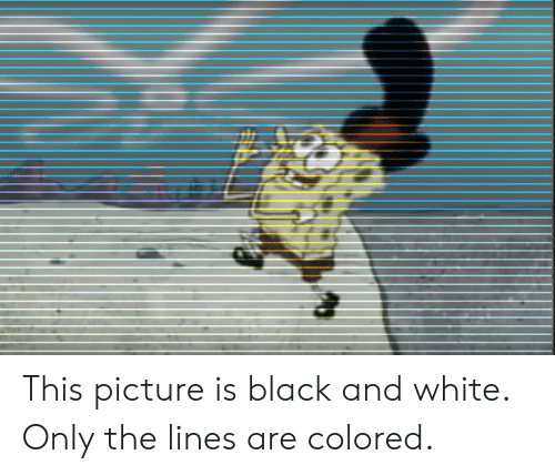 The Lines: This picture is black and white. Only the lines are colored.