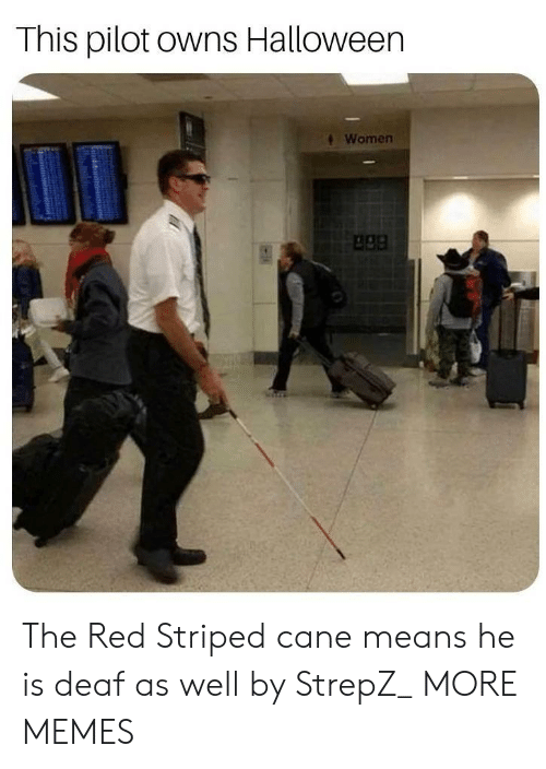 Dank, Halloween, and Memes: This pilot owns Halloween  Women  apa The Red Striped cane means he is deaf as well by StrepZ_ MORE MEMES