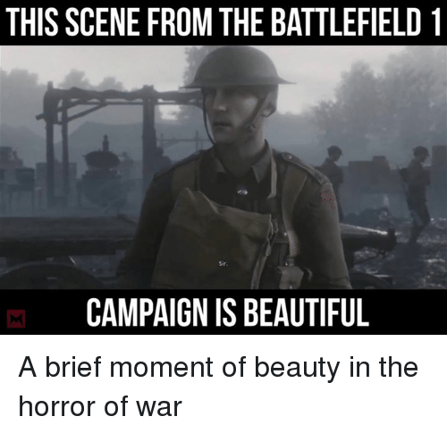 Beautiful, Memes, and Battlefield: THIS SCENE FROM THE BATTLEFIELD 1  Sir  CAMPAIGNIS BEAUTIFUL A brief moment of beauty in the horror of war