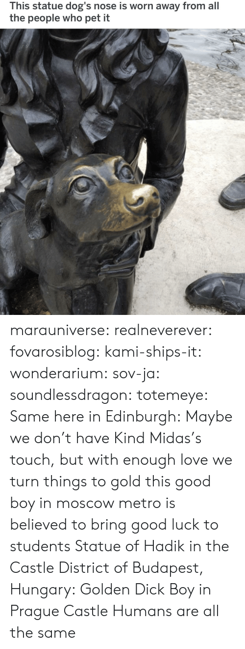 Midas: This statue dog's nose is worn away from all  the people who pet it marauniverse: realneverever:   fovarosiblog:  kami-ships-it:  wonderarium:  sov-ja:  soundlessdragon:  totemeye:  Same here in Edinburgh:  Maybe we don't have Kind Midas's touch, but with enough love we turn things to gold  this good boy in moscow metro is believed to bring good luck to students    Statue of Hadik in the Castle District of Budapest, Hungary:  Golden Dick Boy in Prague Castle   Humans are all the same