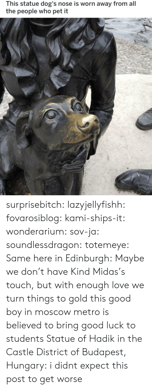Midas: This statue dog's nose is worn away from all  the people who pet it surprisebitch: lazyjellyfishh:  fovarosiblog:  kami-ships-it:  wonderarium:  sov-ja:  soundlessdragon:  totemeye:  Same here in Edinburgh:  Maybe we don't have Kind Midas's touch, but with enough love we turn things to gold  this good boy in moscow metro is believed to bring good luck to students    Statue of Hadik in the Castle District of Budapest, Hungary:    i didnt expect this post to get worse
