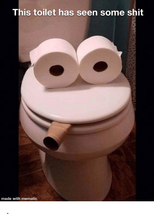 Shit, Made, and This: This toilet has seen some shit  made with mematic .