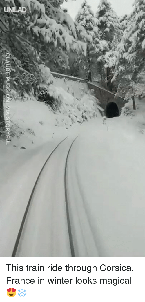 Dank, Winter, and France: This train ride through Corsica, France in winter looks magical 😍❄️