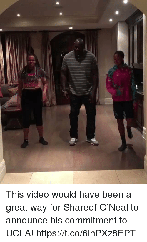 Memes, Video, and Been: This video would have been a great way for Shareef O'Neal to announce his commitment to UCLA! https://t.co/6lnPXz8EPT