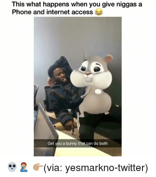 Funny, Internet, and Phone: This what happens when you give niggas a  Phone and internet access  Get you a bunny that can do both 💀🤦🏽♂️ 👉🏽(via: yesmarkno-twitter)