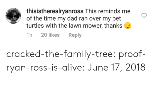 lawn mower: thisistherealryanross This reminds me  of the time my dad ran over my pet  turtles with the lawn mower, thanks  1h 20 likes Reply cracked-the-family-tree:  proof-ryan-ross-is-alive:  June 17, 2018