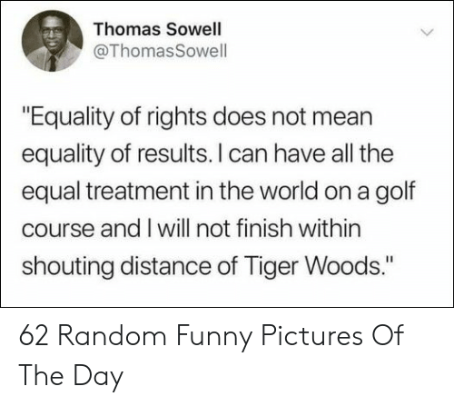 "Funny Pictures Of: Thomas Sowell  @ThomasSowell  ""Equality of rights does not mean  equality of results. I can have all the  equal treatment in the world on a golf  course and I will not finish within  shouting distance of Tiger Woods."" 62 Random Funny Pictures Of The Day"
