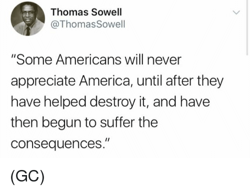 """America, Memes, and Appreciate: Thomas Sowell  @ThomasSowell  """"Some Americans will never  appreciate America, until after they  have helped destroy it, and have  then begun to suffer the  consequences."""" (GC)"""