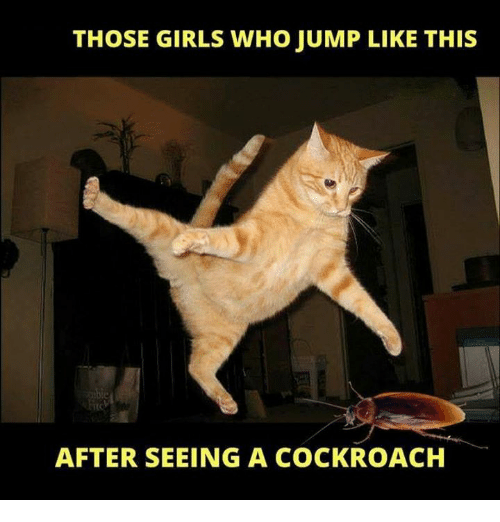 Girls, Memes, and 🤖: THOSE GIRLS WHO JUMP LIKE THIS  AFTER SEEING A COCKROACH