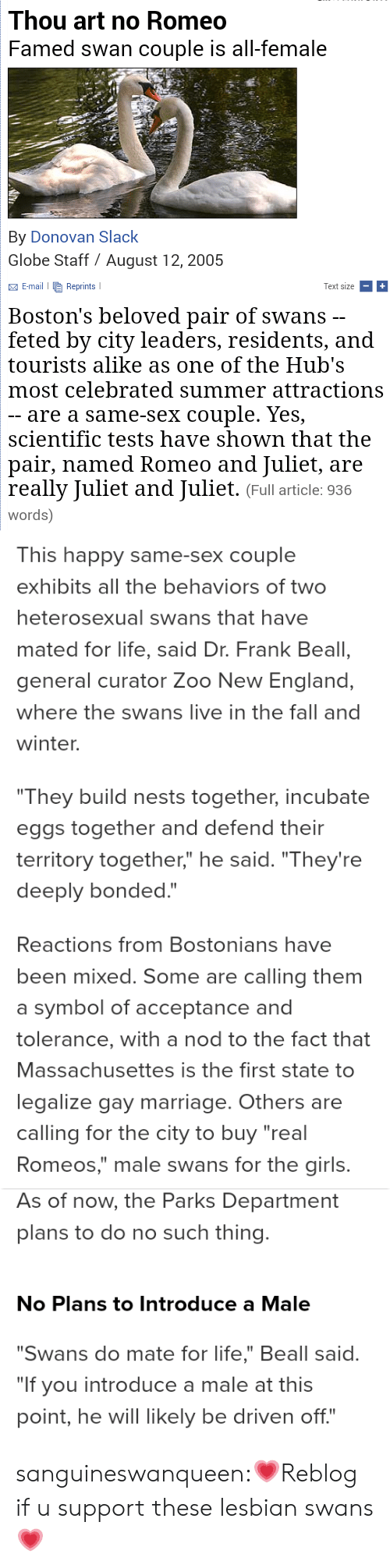 """Such Thing: Thou art no Romeo  Famed swan couple is all-female  By Donovan Slack  Globe Staff August 12, 2005  