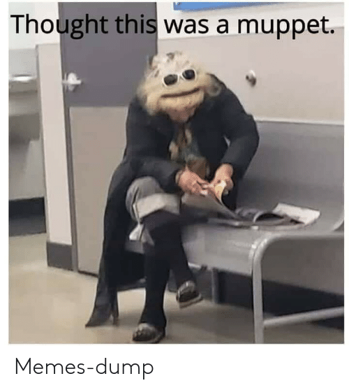 Memes, Thought, and Muppet: Thought this was a muppet. Memes-dump